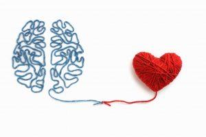 heart-and-brain-300x200.jpg